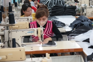 Textile enterprises conquer the domestic market